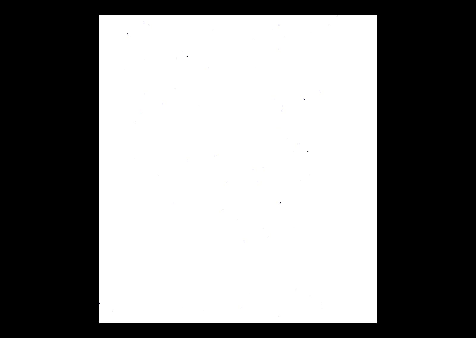 unilever-white.png